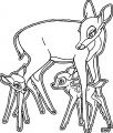 Bambi and his Mother Coloring Pages 4