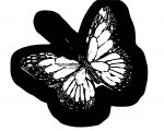Butterfly Coloring Page Wecoloringpage (150)