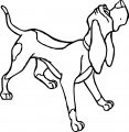 Copper Dog Coloring Page