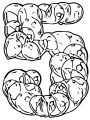 Five Number Of Balloons Coloring Page