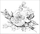 Flower Coloring Page Wecoloringpage 088