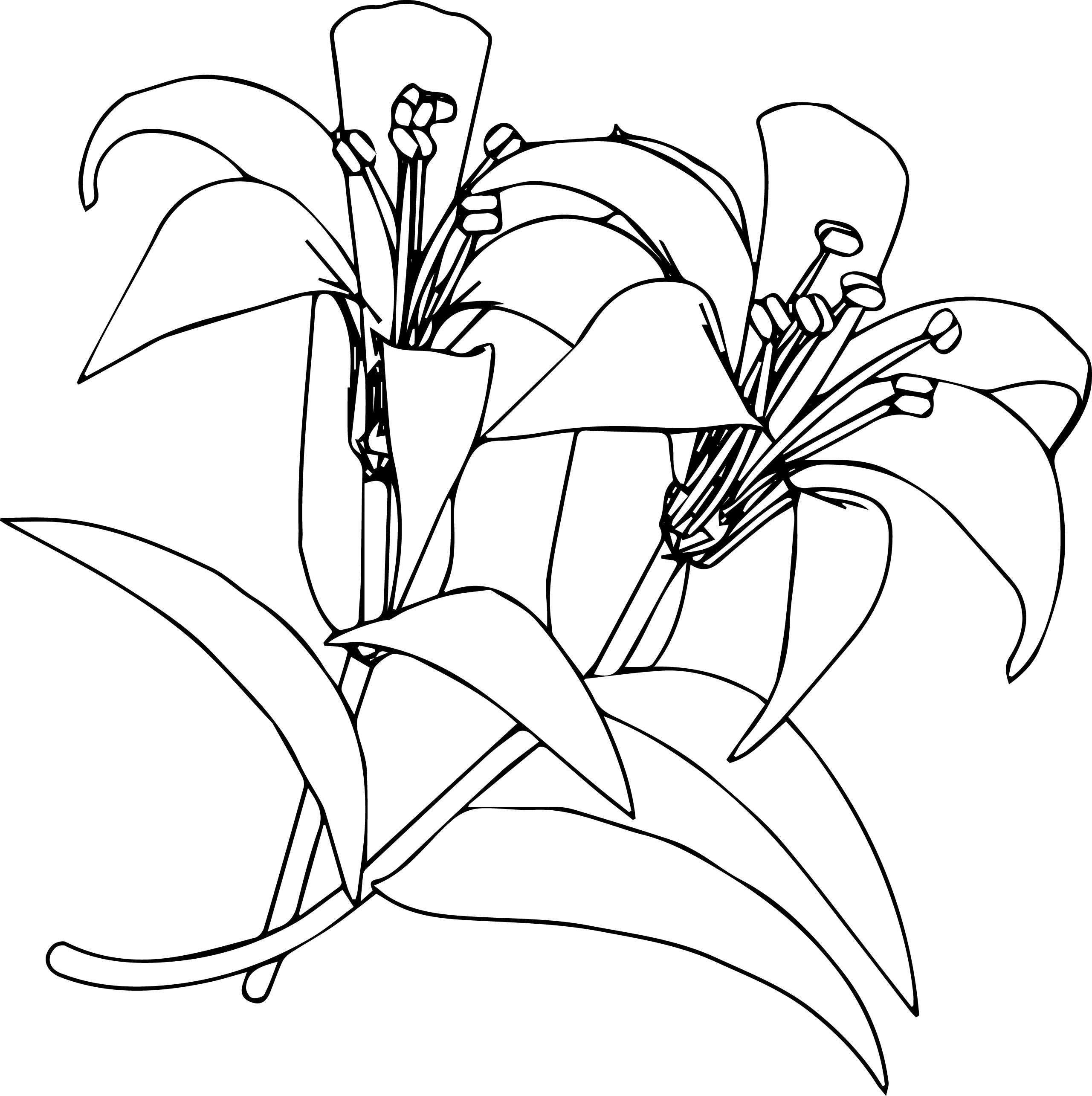Flower5 Coloring Page