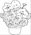 Geramium In A Pot Flower Clipart Pictures Coloring Page
