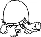 Tortoise Turtle Coloring Page 137
