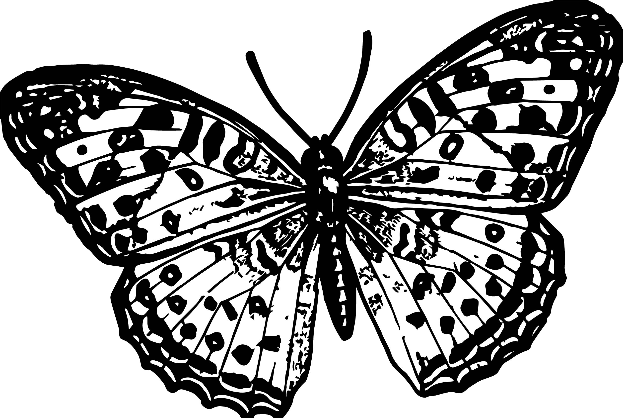 butterfly picture coloring page